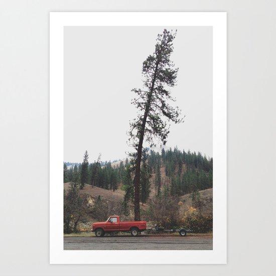Tree Truck Art Print