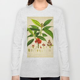 Vintage Scientific Botanical Illustration Species Drawing Himalayan Plants Green Leaves Red Berries Long Sleeve T-shirt