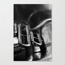 Tuba 2 Canvas Print