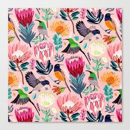 Sunbirds and Proteas Canvas Print