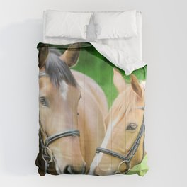 A Beautiful Moment Comforters