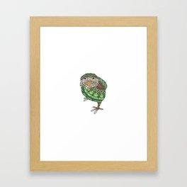 Mandala Kakepo from NZ Bird Collection Framed Art Print