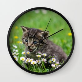 Kitty looking at flowers Wall Clock