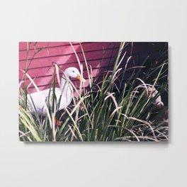 Quack Quack Country Barn Print Metal Print