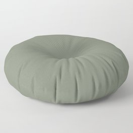 Mellow Earth Green Pairs with Magnolia Paints Olive Grove JG-09 Floor Pillow
