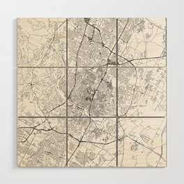 Austin White Map Wood Wall Art