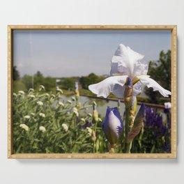 White-blue iris on the park lake Serving Tray