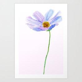 one purple cosmos Art Print