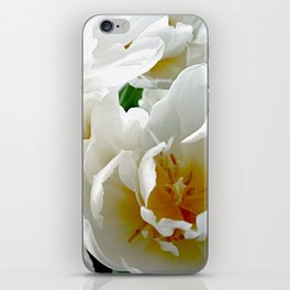 White tulips with afterglow centers iPhone Skin