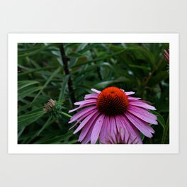 Stand Tall and Alone, Flower Art Print