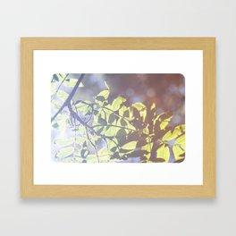 Summer loving.. Framed Art Print