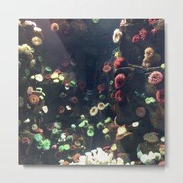 Coral Wall Metal Print