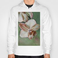 orchid Hoodies featuring Orchid by LoRo  Art & Pictures