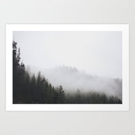 Fog among the pines Art Print