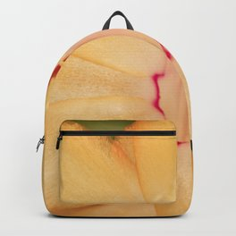 Christmas Cactus Backpack