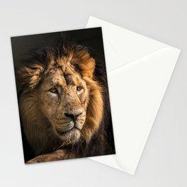 Mr. Lion King - Close up lion portrait Stationery Cards