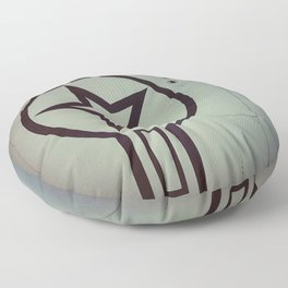 Air Force Insignia Floor Pillow
