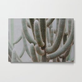 little pricks Metal Print