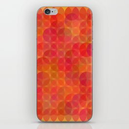 Stained Glass Sunrise iPhone Skin