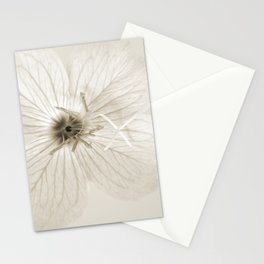 Minimal Sepia Primrose Close-up Stationery Cards