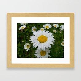 Good Morning, Sunshine! Framed Art Print