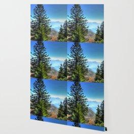 Blue Ridge Mountains North Carolina Wallpaper