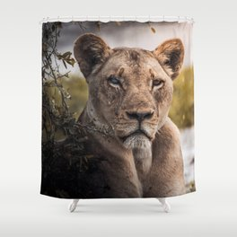 Lion nature Shower Curtain