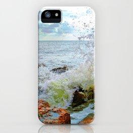 Texas Gulf Coast iPhone Case