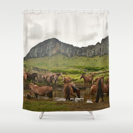 Wild horses on Easter Island Shower Curtain