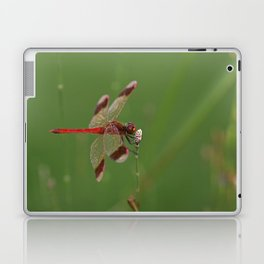 Red Dragonfly Laptop & iPad Skin
