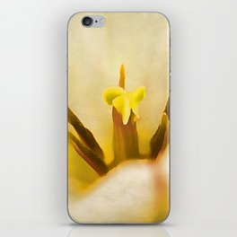 Beauty of Spring iPhone Skin