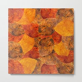 Autumn moods n.1 Metal Print
