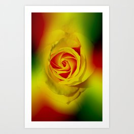 Abstract in Perfection - Rose Art Print