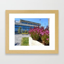 Colors of Ozyegin - Pink Framed Art Print