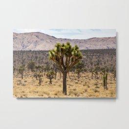Joshua Tree Sea Metal Print