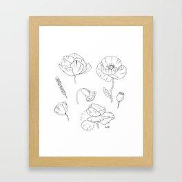 Black white poppy Framed Art Print