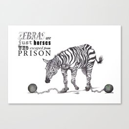 What if...?? Zebras are what?? Canvas Print