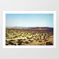 Joshua Tree Panorama III Art Print