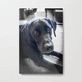 Puppy Love Metal Print