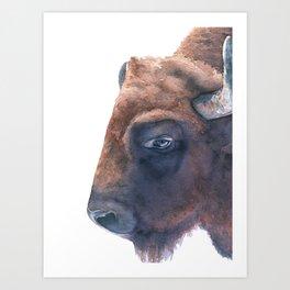 Watercolor Bison Handpainted American Animal Art Buffalo Wildlife Art Into The Wild Adventure Art Art Print