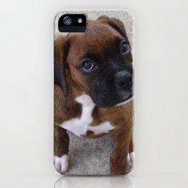 Inquisitive Boxer Pup iPhone Case