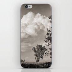 Prairie Clouds B&W iPhone & iPod Skin