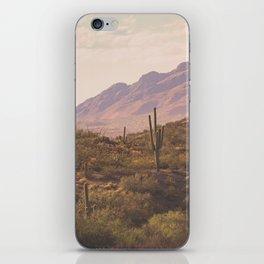 Wild West II iPhone Skin
