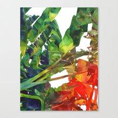 Bananas leaves Canvas Print