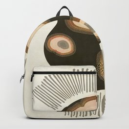 Momo Wild 02 Backpack