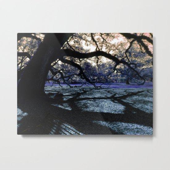 Oak Shadows Lavendar Metal Print