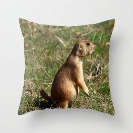 Black-tailed Prairie Dog Pose Throw Pillow