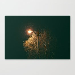I was Looking for You Canvas Print