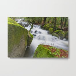 Green landscape on the Âncora river route Metal Print