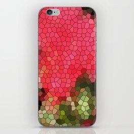 MOSAIC 2 iPhone Skin